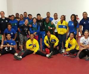 Seleção Brasileira nos Sul-americanos Adulto, Sub 20 e Sub 17